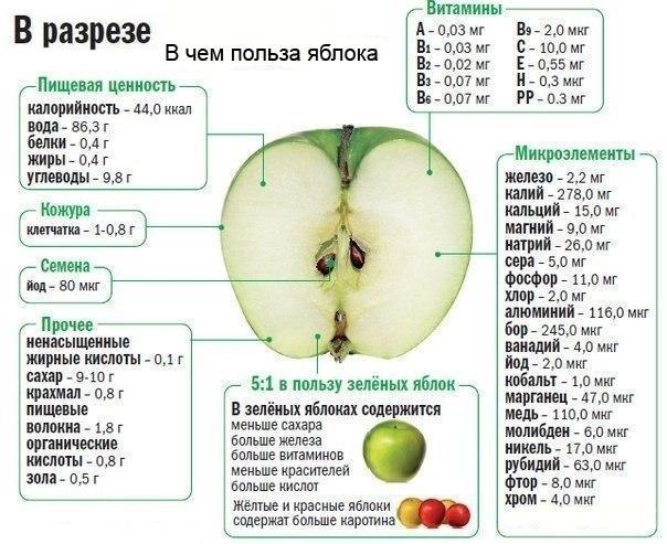 Есть ли сахар в яблоках