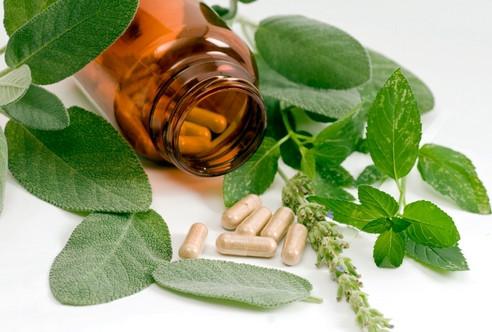 растительные препараты против паразитов