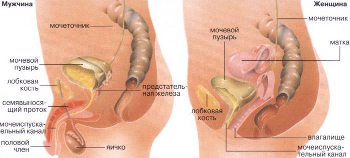 Какие операции становятся причиной запора