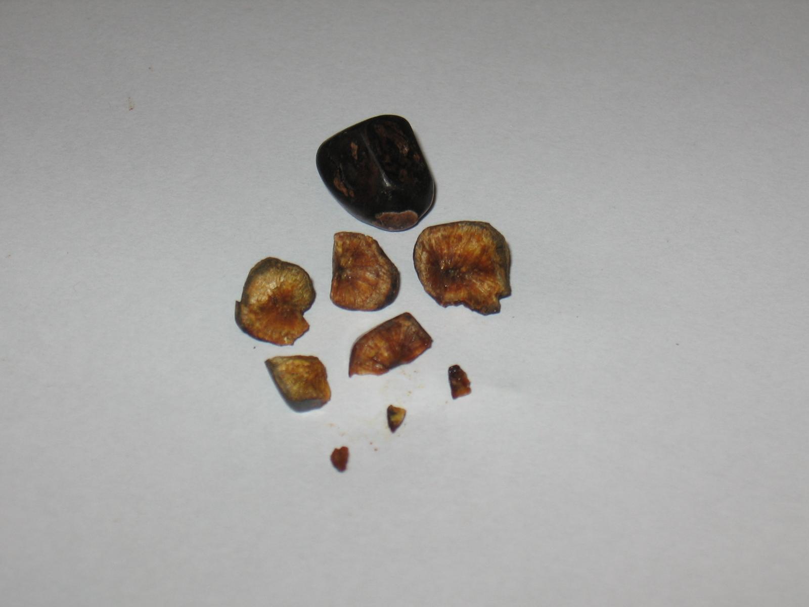 крупные белые камни из почек фото названия поиск выбором